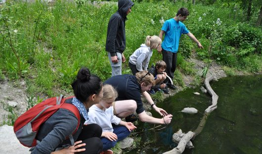 Wychwood students visit the frog pond at High Park